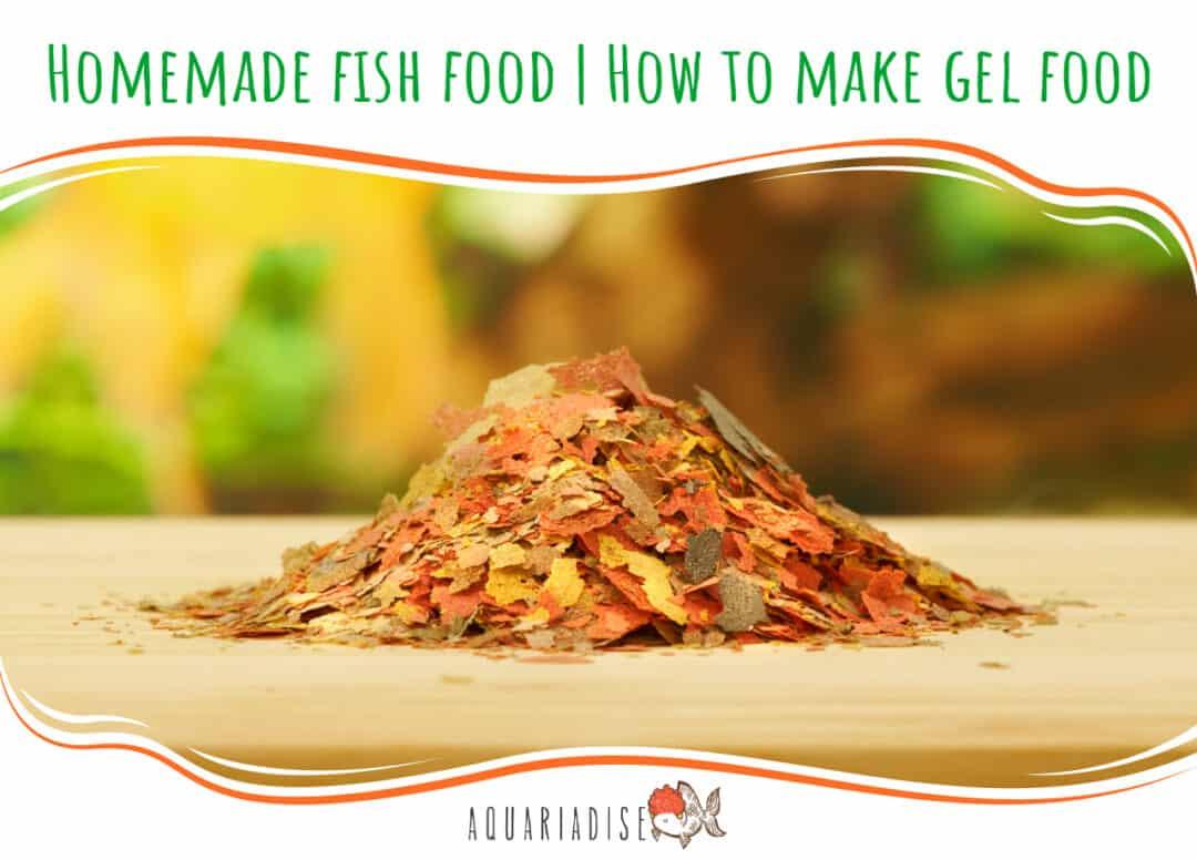 Homemade fish food