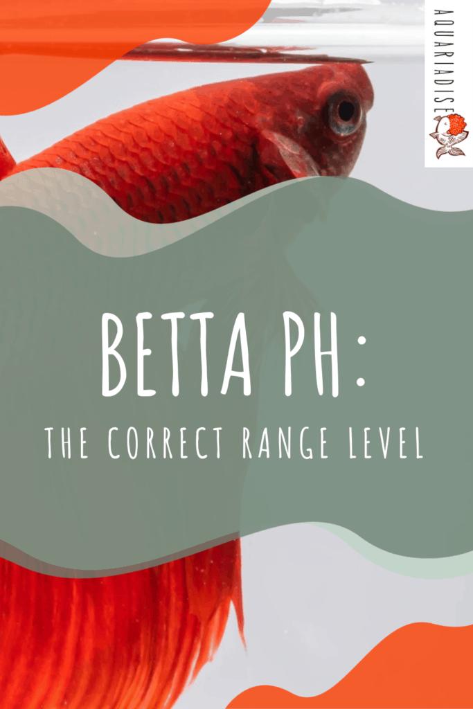 Betta Water Care