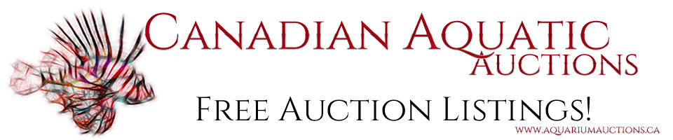 canadian-auction-site-logo