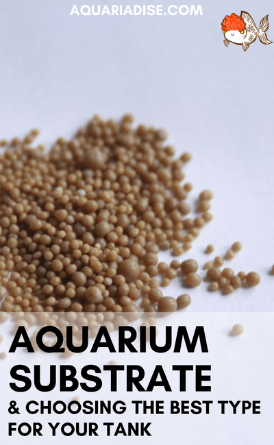 How to choose the best substrate type for your aquarium