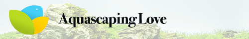 aquascapinglove