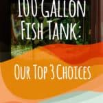 100 Gallon Fish Tank