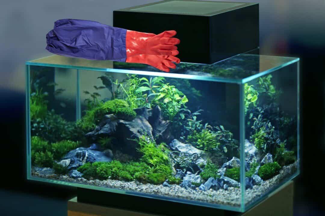 aquarium gloves on top of aquarium tank