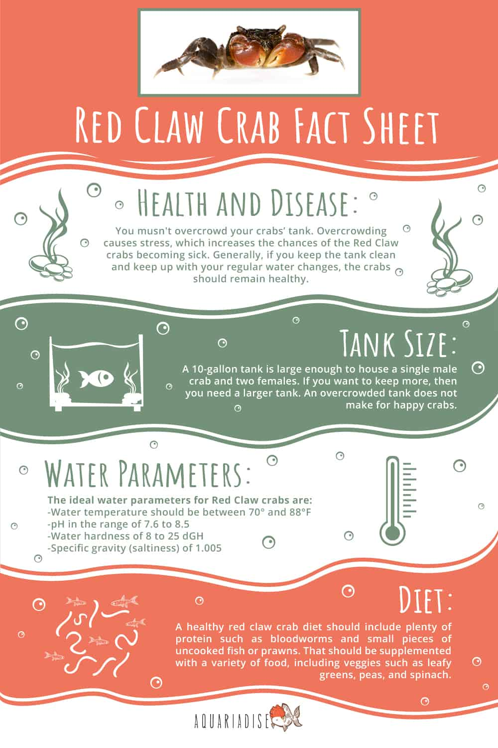 Red Claw Crab Infographic