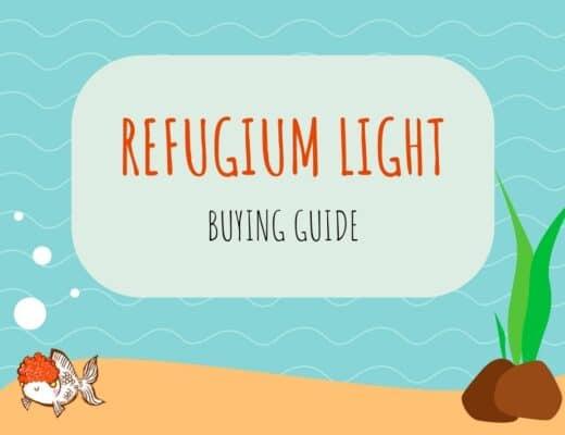 Refugium Light